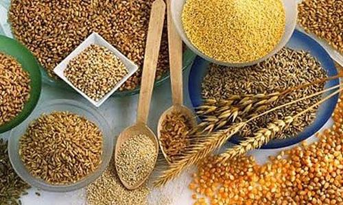 cereais integrais ricos em proteinas